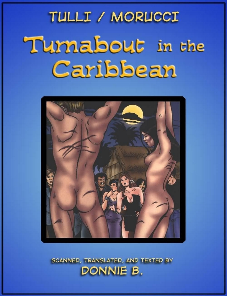 Porn Comics - Turnabout in the Caribbean porn comics 8 muses