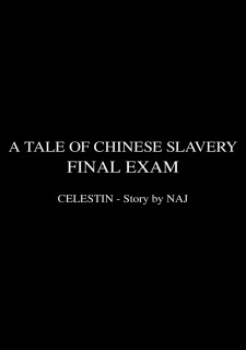 Final Exam 3- Tale of Chinese Slavery image 47
