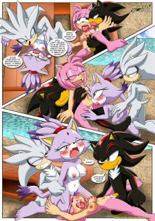 Sonic XXX Project 4- Palcomix image 08