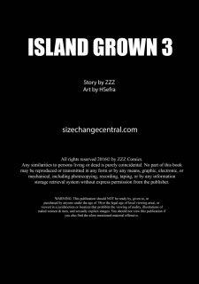 Island Grown 03- ZZZ image 2