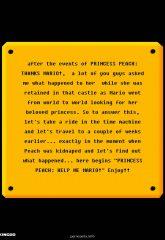 Princess Peach- Help Me Mario! image 02